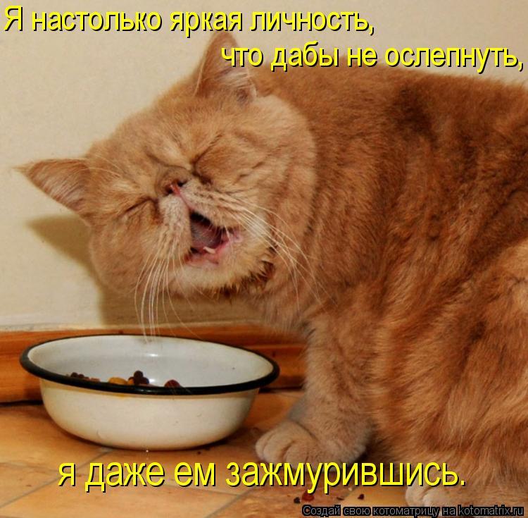 Котоматрица: Я настолько яркая личность, я даже ем зажмурившись. что дабы не ослепнуть,
