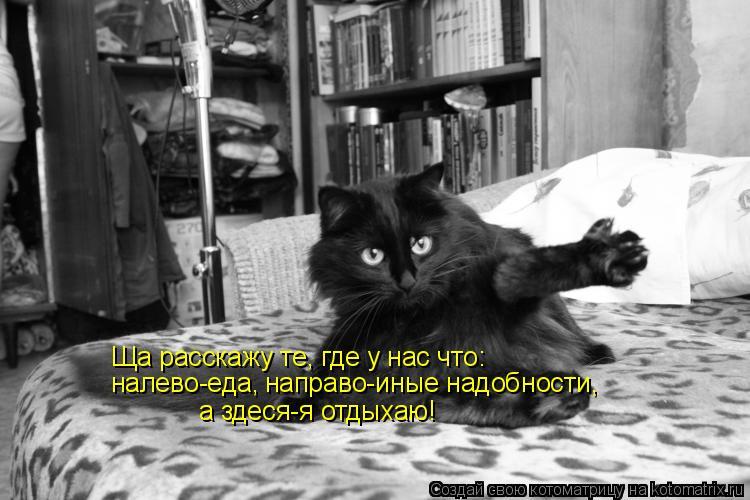 Котоматрица: Ща расскажу те, где у нас что: налево-еда, направо-иные надобности, а здеся-я отдыхаю!