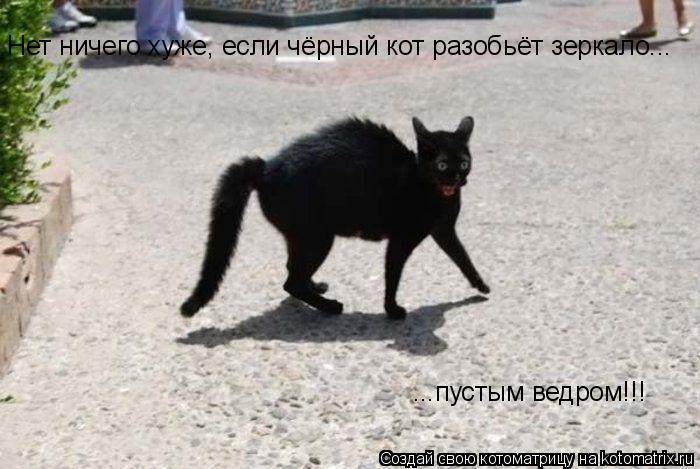 Котоматрица: Нет ничего хуже, если чёрный кот разобьёт зеркало... ...пустым ведром!!!
