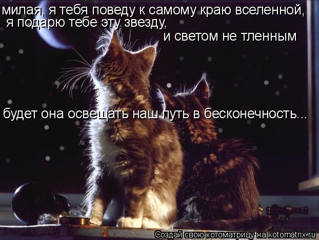 Котоматрица: милая, я тебя поведу к самому краю вселенной, я подарю тебе эту звезду, и светом не тленным будет она освещать наш путь в бесконечность...