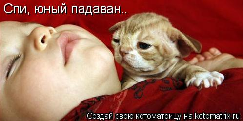 Котоматрица: Спи, юный падаван..