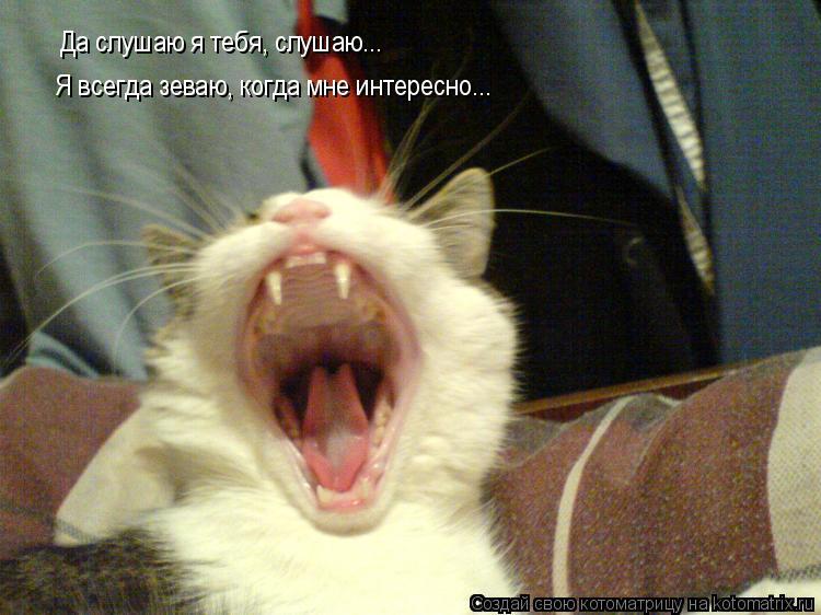 Котоматрица: Да слушаю я тебя, слушаю... Да слушаю я тебя, слушаю... Я всегда зеваю, когда мне интересно...