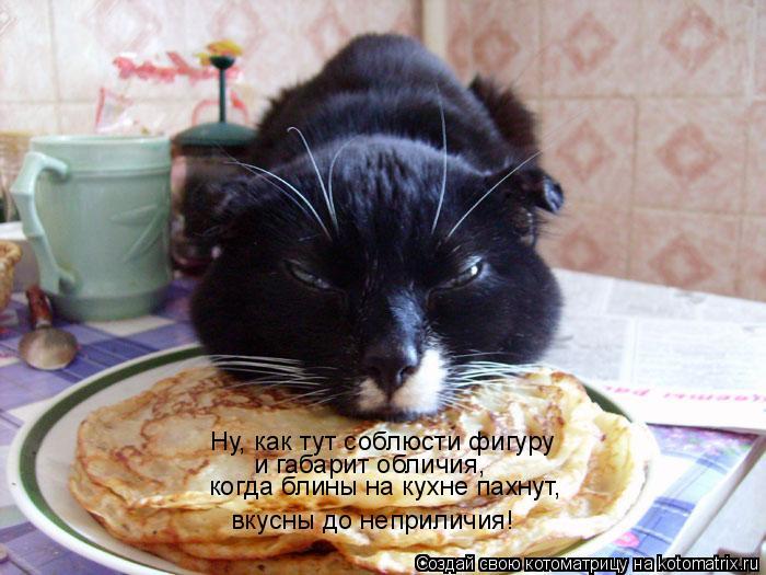 Котоматрица: Ну, как тут соблюсти фигуру  и габарит обличия, когда блины на кухне пахнут, вкусны до неприличия!