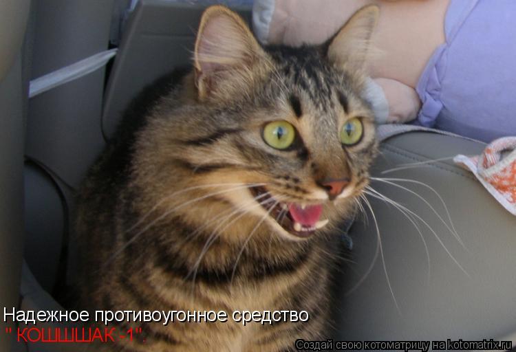"""Котоматрица: Надежное противоугонное средство """" КОШШШАК -1""""."""