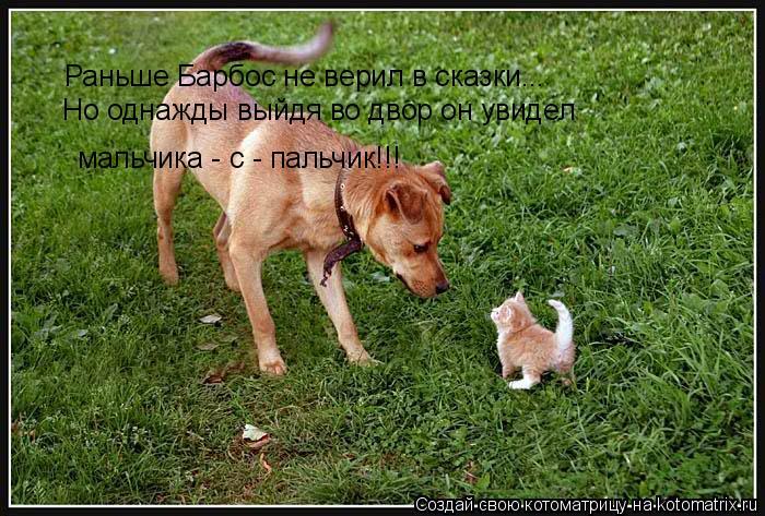 Котоматрица: Раньше Барбос не верил в сказки... Но однажды выйдя во двор он увидел  мальчика - с - пальчик!!!