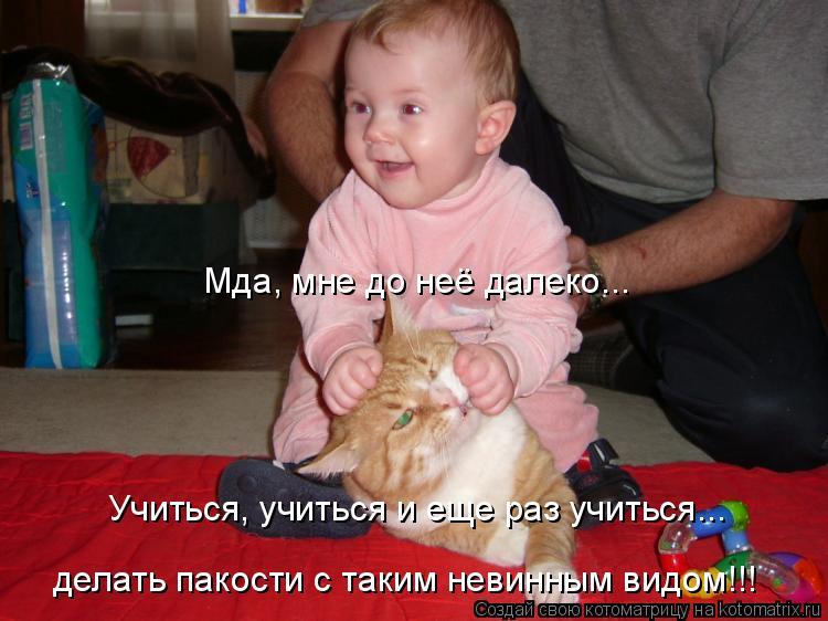 Смотреть онлайн невинный вид 10 фотография