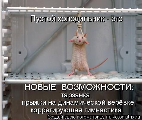 Котоматрица: Пустой холодильник - это НОВЫЕ  ВОЗМОЖНОСТИ: тарзанка, прыжки на динамической верёвке, коррегирующая гимнастика.