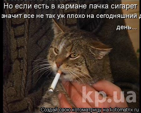 Котоматрица: Но если есть в кармане пачка сигарет значит все не так уж плохо на сегодняшний день  день...