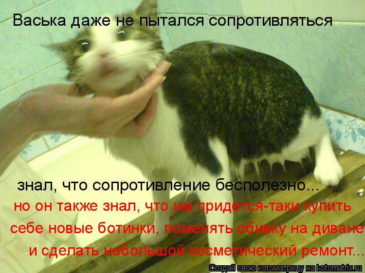 Котоматрица: Васька даже не пытался сопротивляться знал, что сопротивление бесполезно... но он также знал, что им придется-таки купить себе новые ботинки