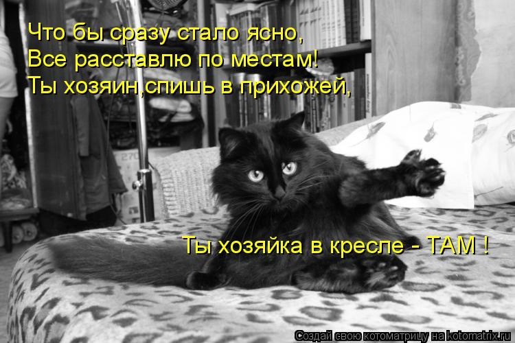 Котоматрица: Что бы сразу стало ясно, Все расставлю по местам! Ты хозяин,спишь в прихожей, Ты хозяйка в кресле - ТАМ !