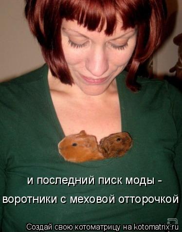 Котоматрица: и последний писк моды -  воротники с меховой отторочкой