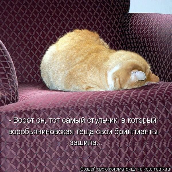 Котоматрица: - Вооот он, тот самый стульчик, в который  воробьяниновская тёща свои бриллианты  зашила...
