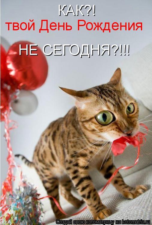 Котоматрица: КАК?! твой День Рождения НЕ СЕГОДНЯ?!!!