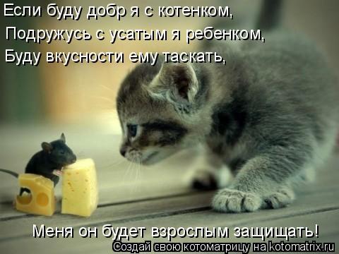 Котоматрица: Если буду добр я с котенком, Подружусь с усатым я ребенком, Буду вкусности ему таскать, Меня он будет взрослым защищать!