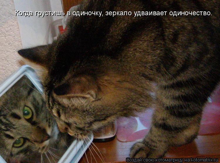 Котоматрица: Когда грустишь в одиночку, зеркало удваивает одиночество.