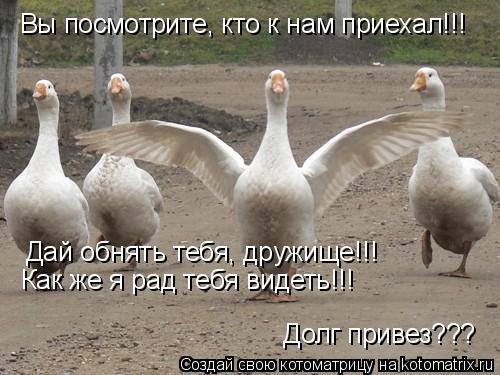 Котоматрица: Вы посмотрите, кто к нам приехал!!! Дай обнять тебя, дружище!!! Как же я рад тебя видеть!!! Долг привез???