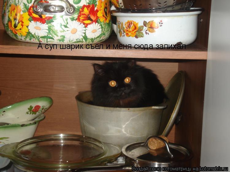 Котоматрица: А суп шарик съел и меня сюда запихал