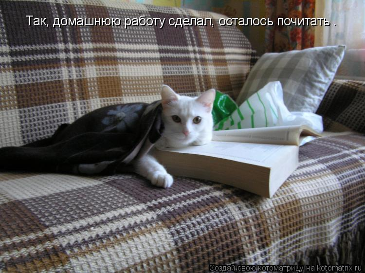 Котоматрица: Так, домашнюю работу сделал, осталось почитать .