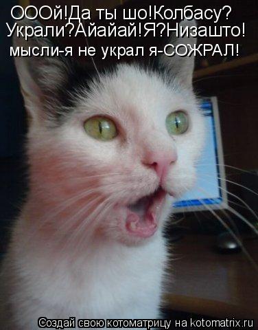 Котоматрица: ОООй!Да ты шо!Колбасу? Украли?Айайай!Я?Низашто! мысли-я не украл я-СОЖРАЛ!