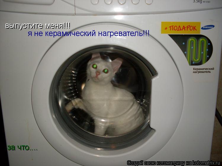 Котоматрица: выпустите меня!!! я не керамический нагреватель!!! за что....