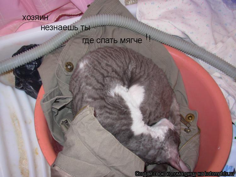 Котоматрица: хозяин  незнаешь ты  где спать мягче ! !