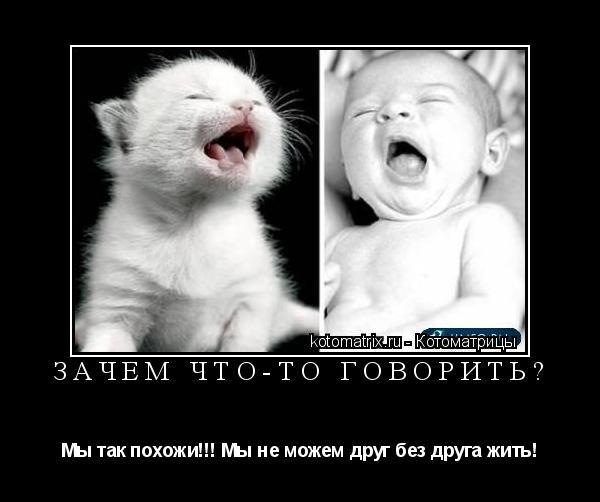 Котоматрица: Зачем что-то говорить? Мы так похожи!!! Мы не можем друг без друга жить!