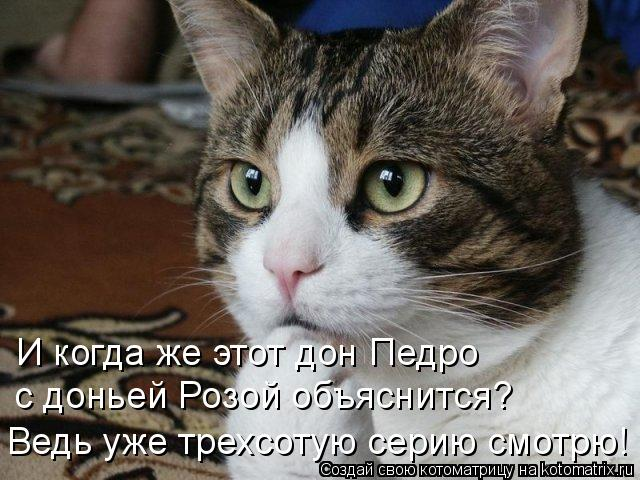 http://kotomatrix.ru/images/lolz/2009/12/06/425233.jpg