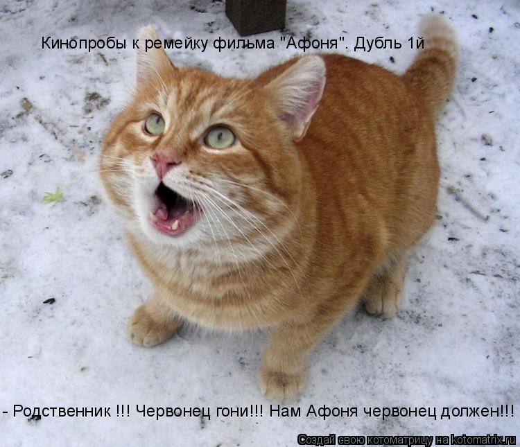 """Котоматрица: - Родственник !!! Червонец гони!!! Нам Афоня червонец должен!!! Кинопробы к ремейку фильма """"Афоня"""". Дубль 1й"""