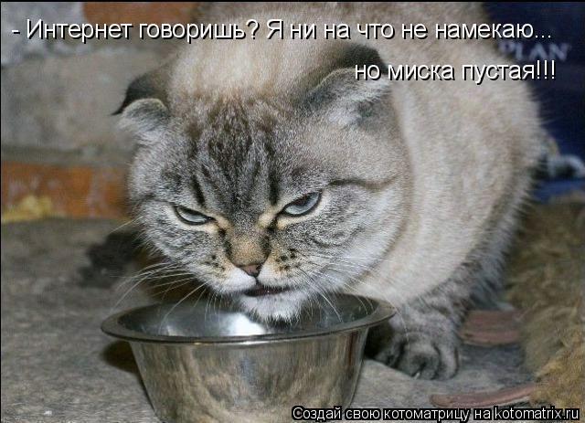 Котоматрица: - Интернет говоришь? Я ни на что не намекаю... но миска пустая!!!