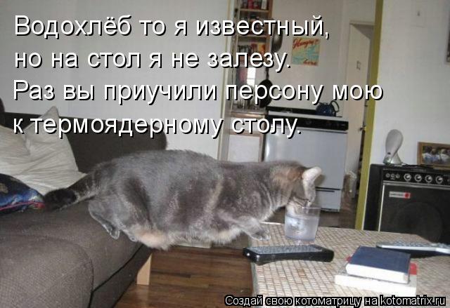 Котоматрица: Водохлёб то я известный, но на стол я не залезу. Раз вы приучили персону мою к термоядерному столу.