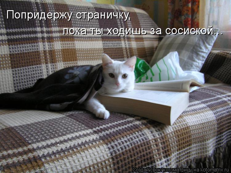Котоматрица: Попридержу страничку,  пока ты ходишь за сосиской...