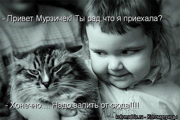 Котоматрица: - Привет Мурзичек! Ты рад,что я приехала? - Хонечно.... Надо валить от сюда!!!!