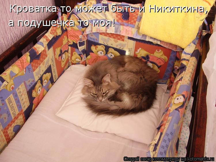 Котоматрица: Кроватка то может быть и Никиткина, а подушечка то моя!