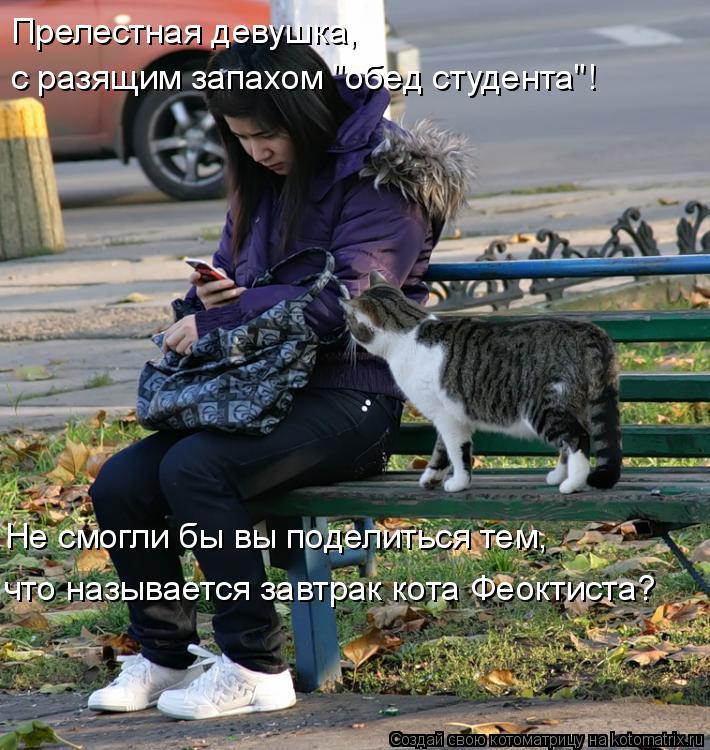 """Котоматрица: Прелестная девушка, с разящим запахом """"обед студента""""! Не смогли бы вы поделиться тем, что называется завтрак кота Феоктиста?"""