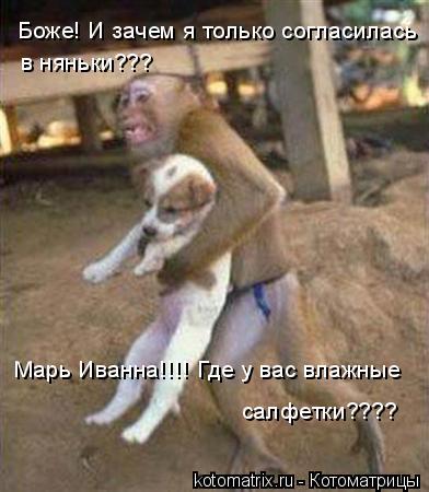 Котоматрица: Боже! И зачем я только согласилась  в няньки??? Марь Иванна!!!! Где у вас влажные салфетки????