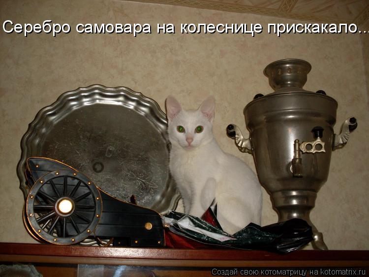 Котоматрица: Серебро самовара на колеснице прискакало...
