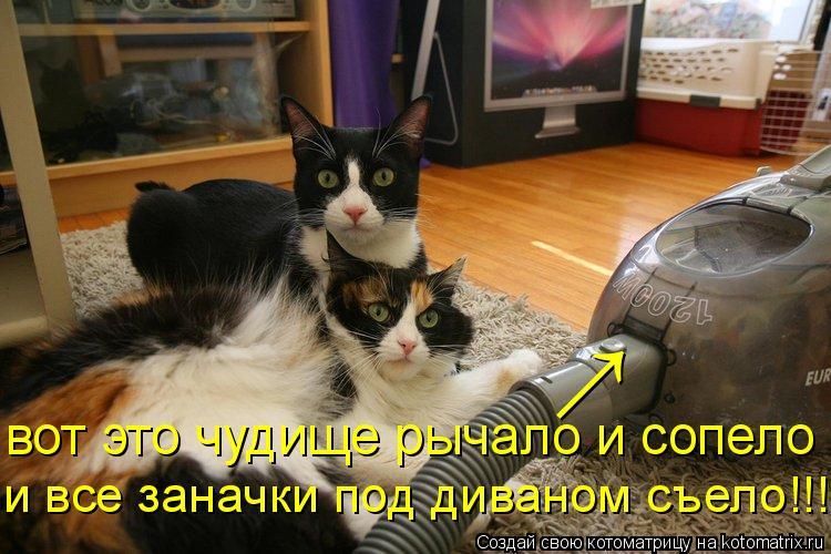 Котоматрица: вот это чудище рычало и сопело и все заначки под диваном съело!!! ↑