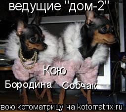 """Котоматрица: ведущие """"дом-2"""" Ксю Бородина Собчак"""