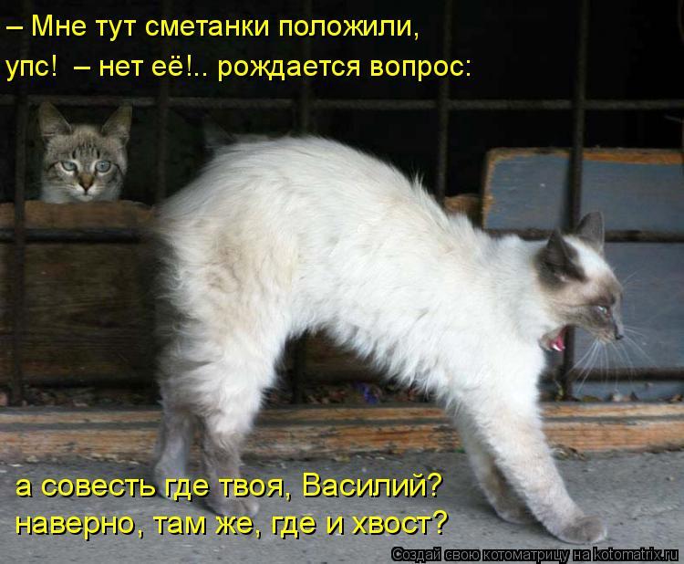 Котоматрица: упс!  – нет её!.. рождается вопрос: – Мне тут сметанки положили, а совесть где твоя, Василий? наверно, там же, где и хвост?