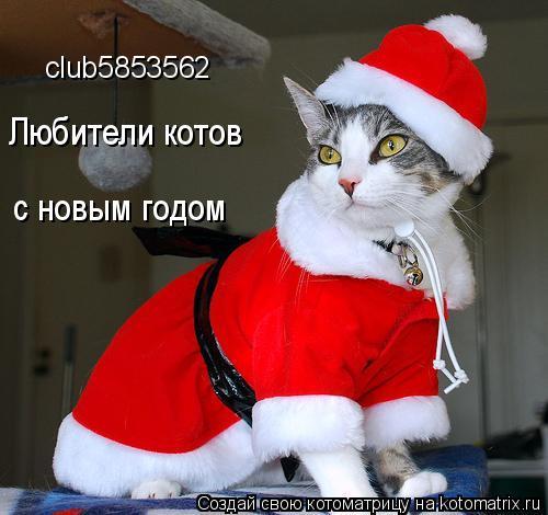 Котоматрица: club5853562 Любители котов с новым годом