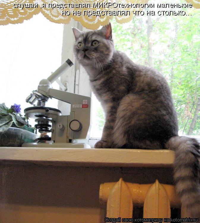 Котоматрица: слушай ,я представлял МИКРОтехнологии маленькие но не представлял что на столько...