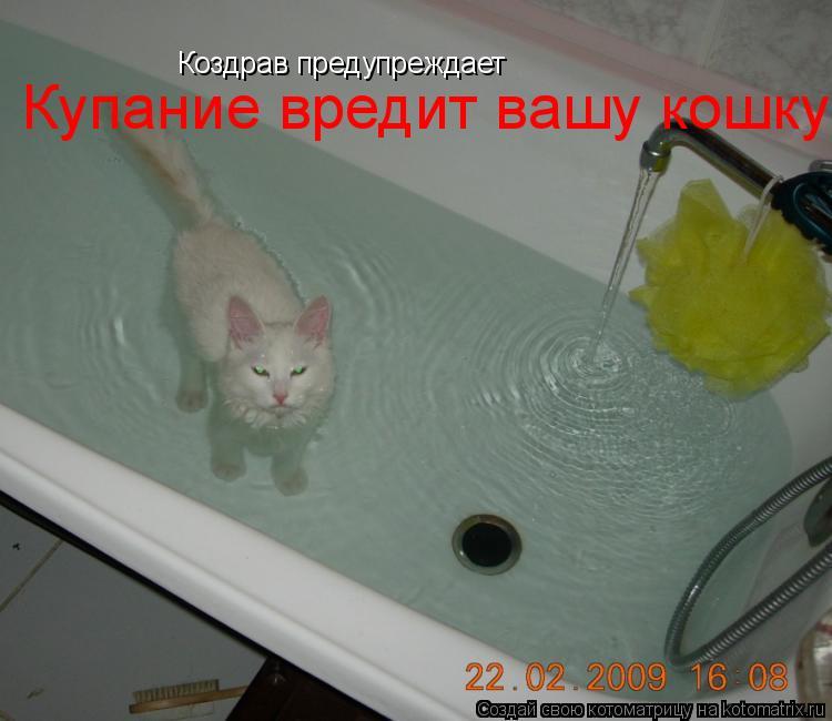 Котоматрица: Коздрав предупреждает Купание вредит вашу кошку