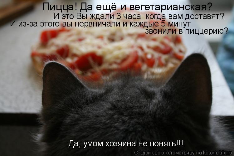 Котоматрица: Пицца! Да ещё и вегетарианская? И это Вы ждали 3 часа, когда вам доставят? И из-за этого вы нервничали и каждые 5 минут  звонили в пиццерию? Да, у