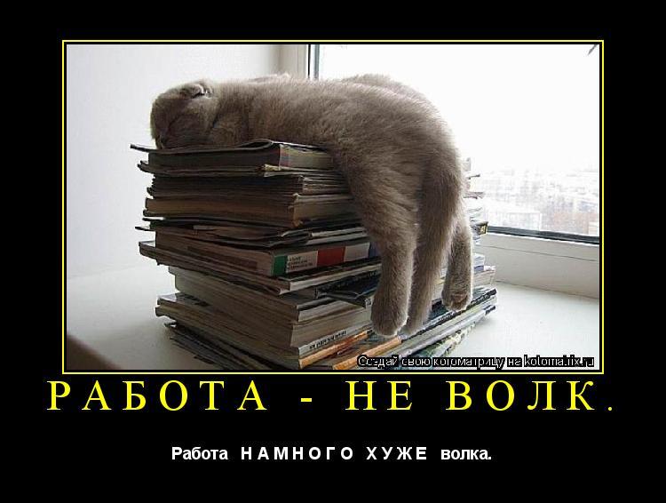 Котоматрица: Работа - не волк. Работа   Н А М Н О Г О   Х У Ж Е   волка.