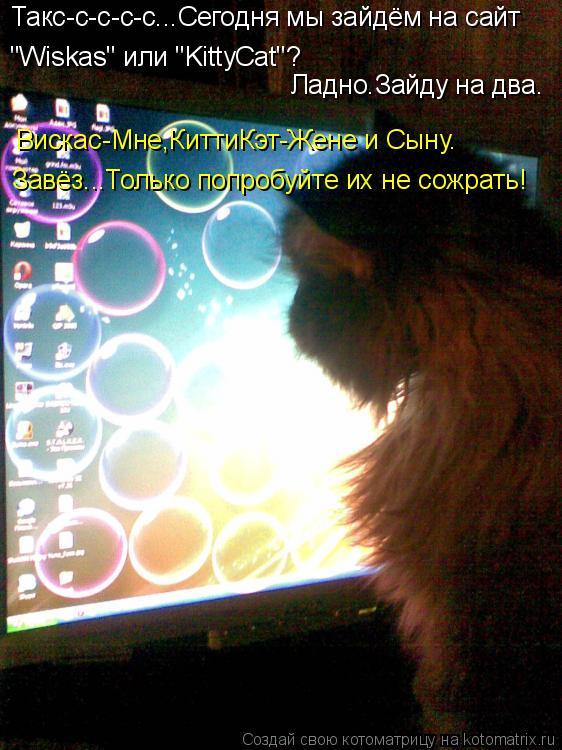 """Котоматрица: Такс-с-с-с-с...Сегодня мы зайдём на сайт """"Wiskas"""" или """"KittyCat""""? Ладно.Зайду на два. Вискас-Мне,КиттиКэт-Жене и Сыну. Завёз...Только попробуйте их не"""