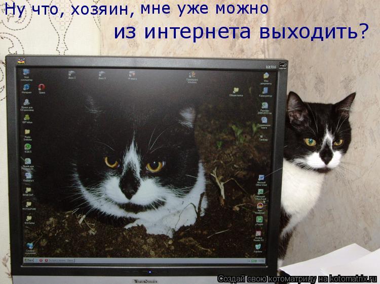 Котоматрица: Ну что, хозяин, мне уже можно  из интернета выходить?