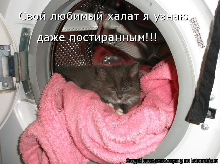 Котоматрица: Свой любимый халат я узнаю  даже постиранным!!!