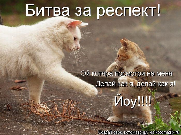 Котоматрица: Битва за респект! Эй котяра посмотри на меня Делай как я, делай как я! Йоу!!!!