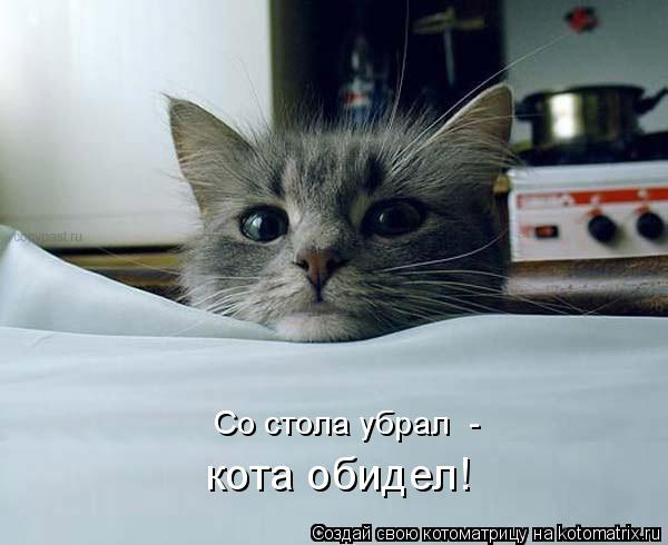Котоматрица: Со стола убрал  -  кота обидел!
