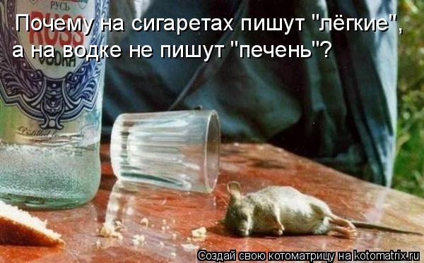 "Котоматрица: Почему на сигаретах пишут ""лёгкие"", а на водке не пишут ""печень""?"